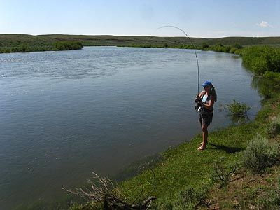 green river fly fishing guides