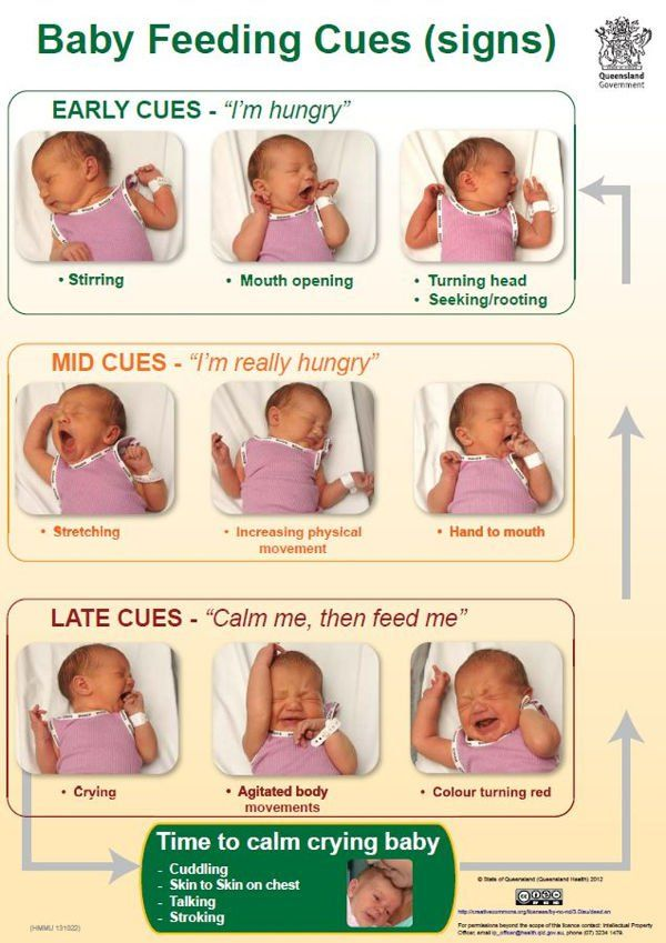 baby guide for new parents