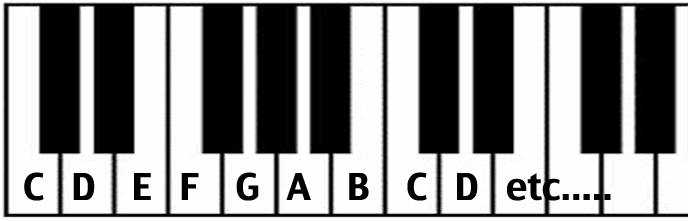 the rough guide to reading music and basic theory
