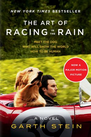 the art of racing in the rain study guide