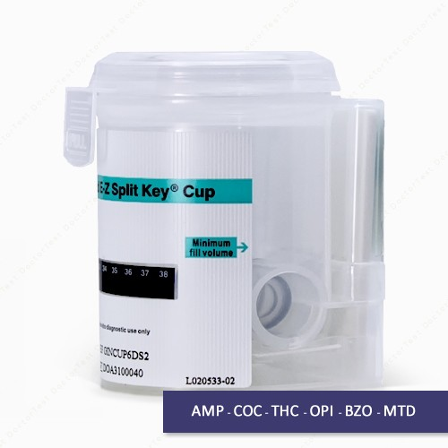 drug testing at work a guide for employers and employees