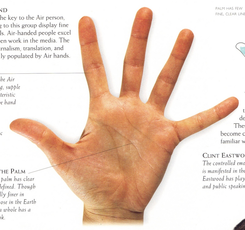 money line palm reading guide