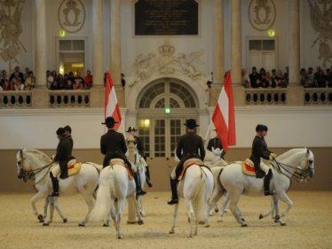 spanish riding school guided tour
